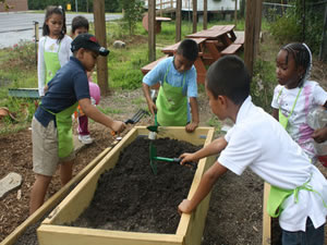 Youth Activities - Gardening
